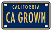 CA grown