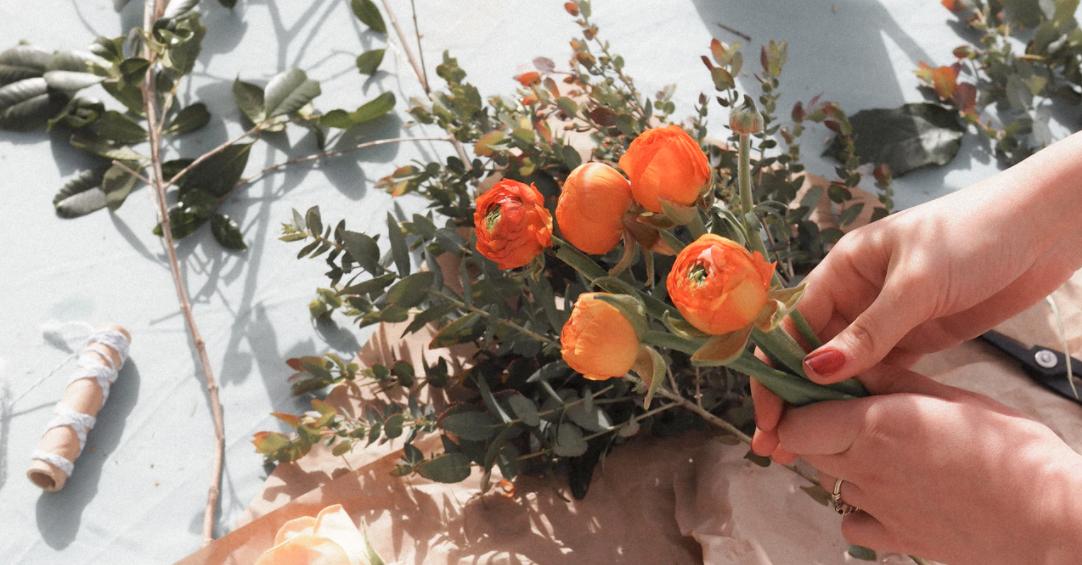 Farm fresh ranunculus wholesale flowers bulk