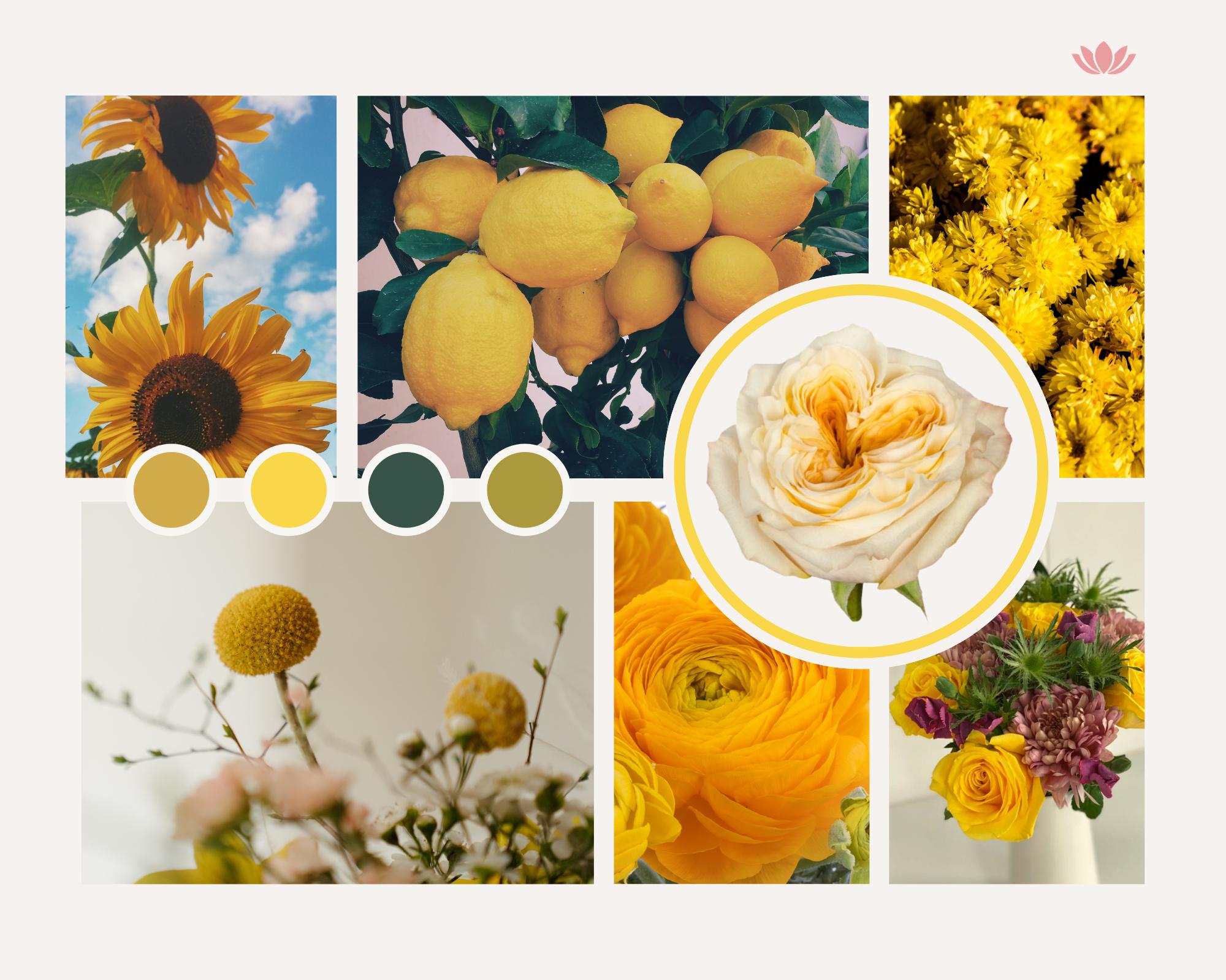 Summer yellow - moodboard