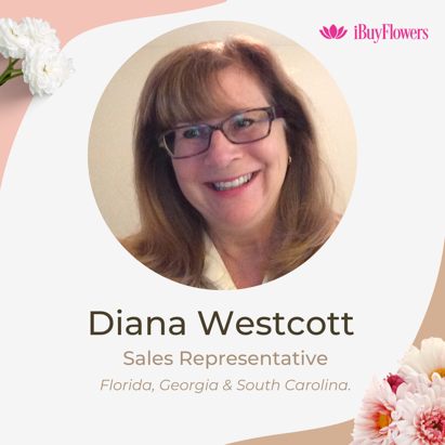 diana wescott joins ibf