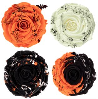 Vampire preserved roses from ibuyflowers