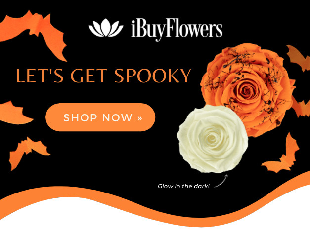 wholesale preserved roses halloween collection available
