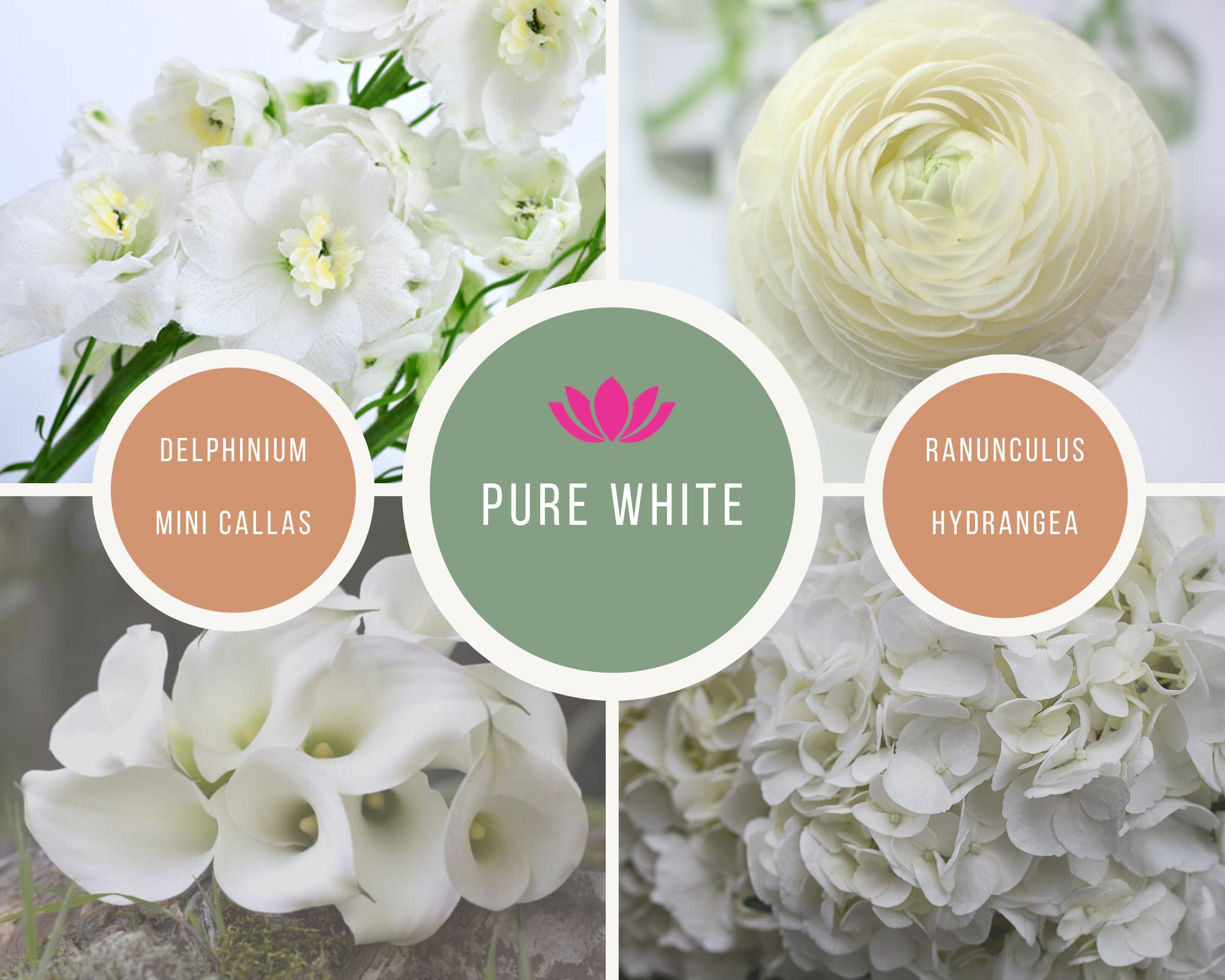 pure white -Mood boards